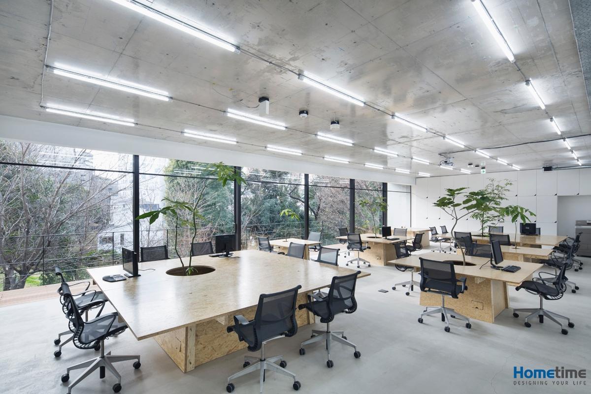 Thiết kế văn phòng mở tạo sự thoáng mát thoải mái